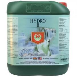 Hydro B (Grow&Bloom) 5L (H&G)