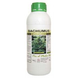 Bachumus Evolution F 1L