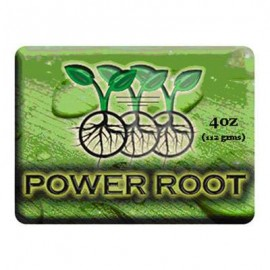IPP Power Root Gel 250ml^