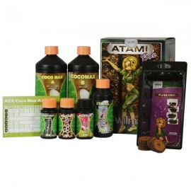 Promo - Kit Box Coco (Atami)