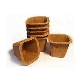 Promo - Maceteros Biodegradables