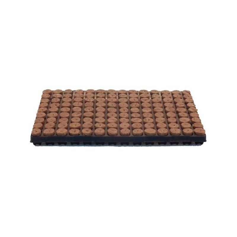 Bandeja lana de roca GREEN 126alv. 28x40mm