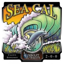Sea Cal 0,9L. (32oz) Humboldt