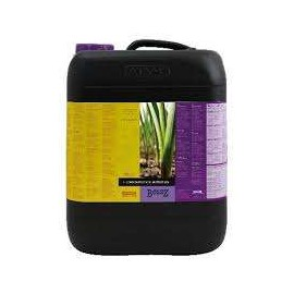 Bcuzz 1 Component Soil Nutrion 10L. (Atami)